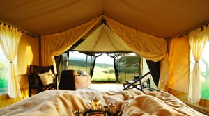 Why Glamping is perfect for couples