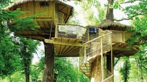 Why Glamping in a Treehouse Is Such an Exciting New Trend