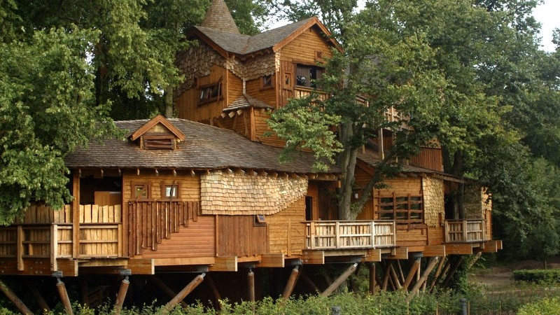 glamping-tree-house