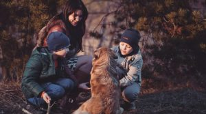 Glamping With Your Dog – Luxurious Companion Camping